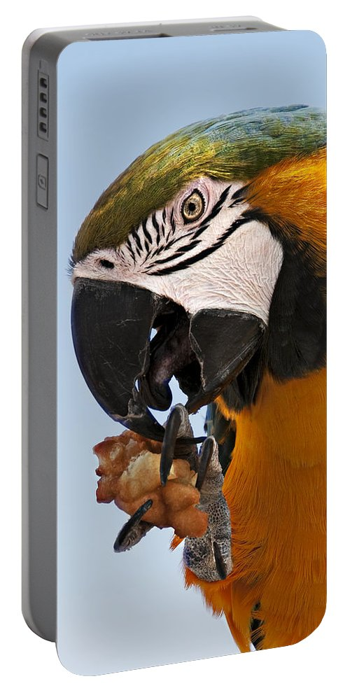 Bird Portable Battery Charger featuring the photograph Yum, Funnel Cakes by Mitch Spence