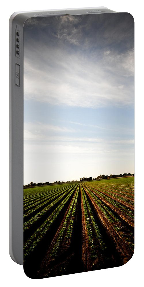 Lettuce Portable Battery Charger featuring the photograph Yuma Fields by Scott Sawyer