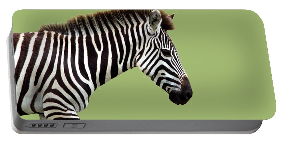 Zebra Portable Battery Charger featuring the photograph Zebra by Aidan Moran