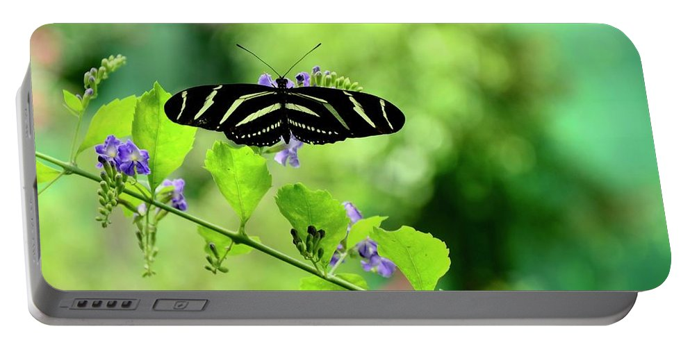 Butterfly Portable Battery Charger featuring the photograph Zebra Longwing Butterfly by Corinne Rhode