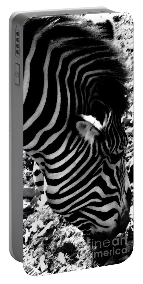 Zebra Portable Battery Charger featuring the photograph Zebra2 by September Stone