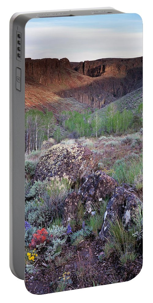 Zeno Canyon Portable Battery Charger featuring the photograph Zeno Canyon by Leland D Howard