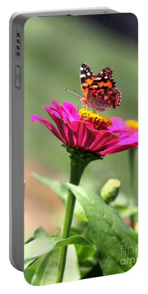 White Portable Battery Charger featuring the photograph Zinnia Visitor by Angela Rath