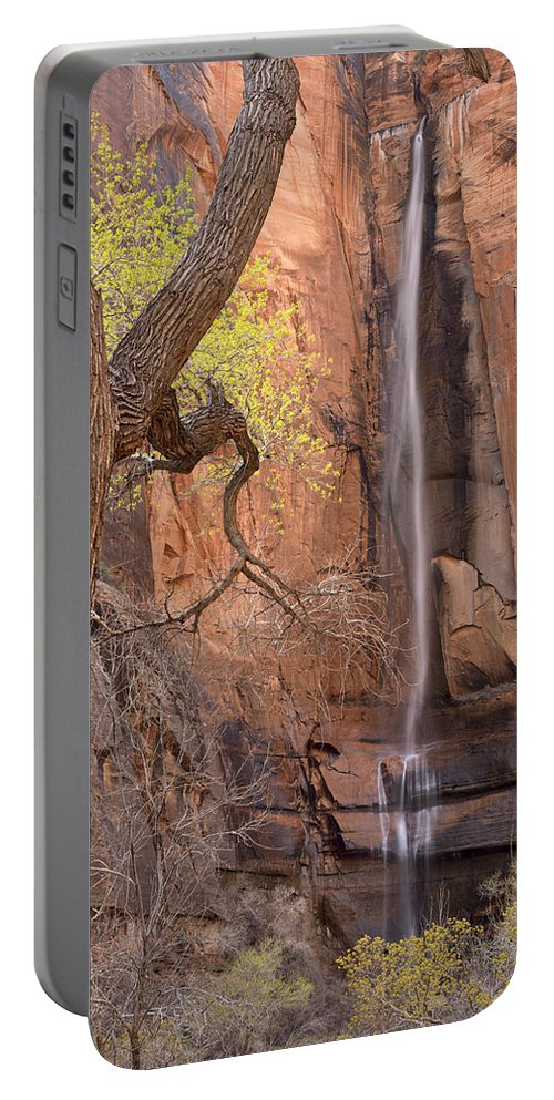 Cliff Portable Battery Charger featuring the photograph Zion Canyon by Leland D Howard