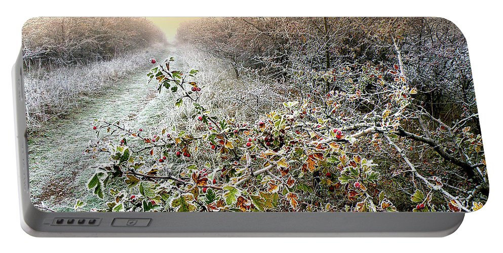 Autumn Portable Battery Charger featuring the photograph Autumn Frosts by Alex Lim