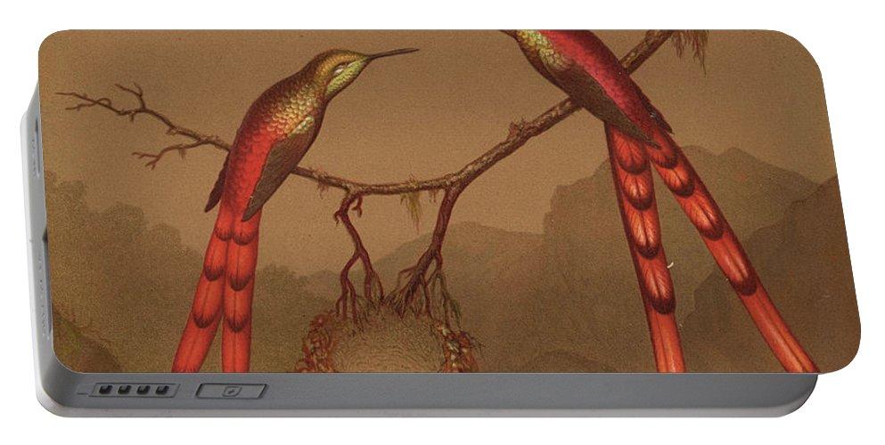 Brazilian Hummingbirds Portable Battery Charger featuring the painting Brazilian Hummingbirds by Martin Johnson Heade