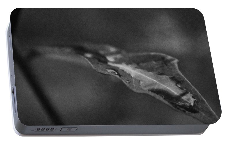 Leaf, Wet Portable Battery Charger