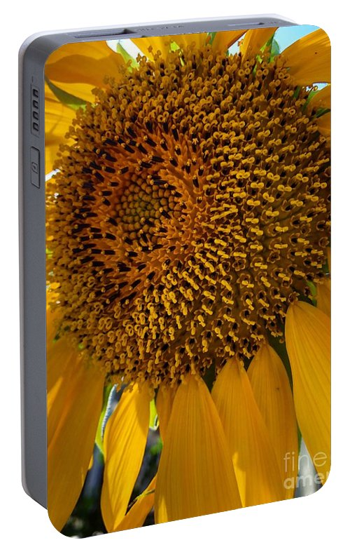 Sunflower Portable Battery Charger featuring the photograph Sunflower In The Sun by Melissa OGara