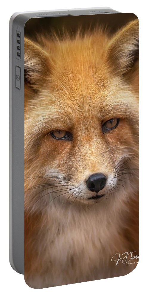 Russianredfox Portable Battery Charger featuring the photograph Russian Red Fox by David Pine