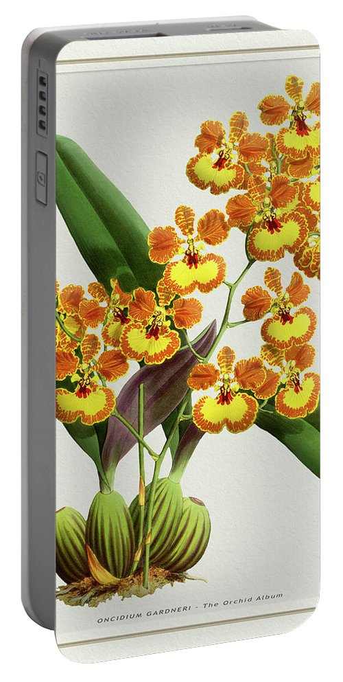 Vintage Portable Battery Charger featuring the drawing Orchid Vintage Print On Tinted Paperboard by Baptiste Posters