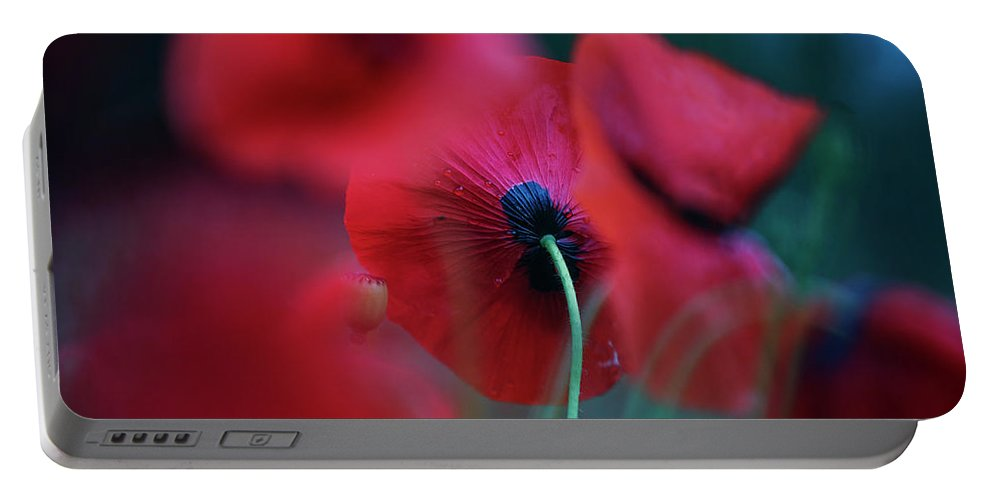 Poppy Portable Battery Charger featuring the photograph Red Corn Poppy Flowers 4 by Nailia Schwarz
