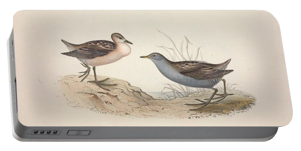Nature Portable Battery Charger featuring the painting Different Types Of Birds Illustrated By Charles Dessalines D Orbigny 1806-1876 21 83 by Charles Dessalines D Orbigny