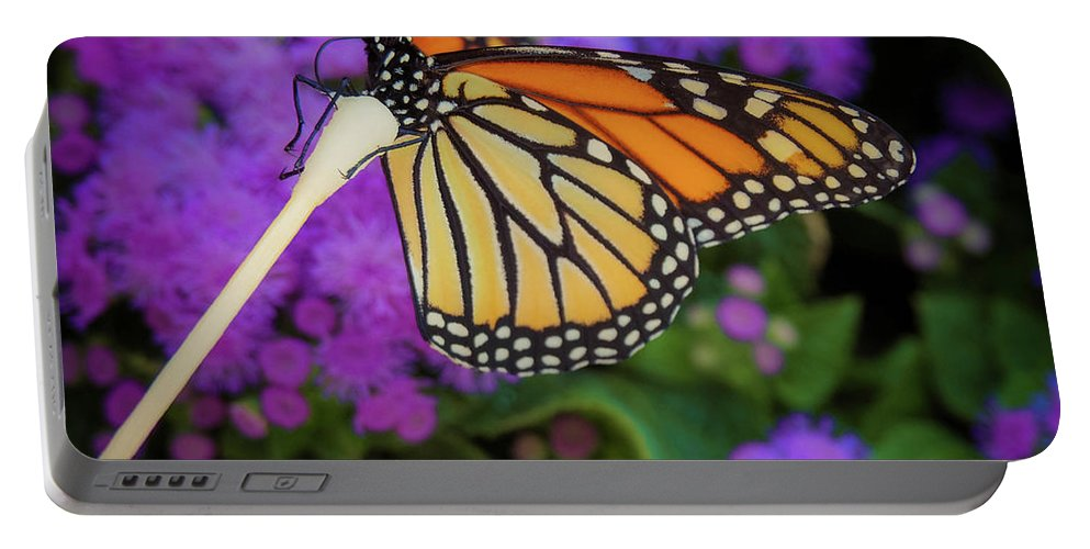 Flower Portable Battery Charger featuring the photograph A Monarch's Lunch by Gina Matarazzo