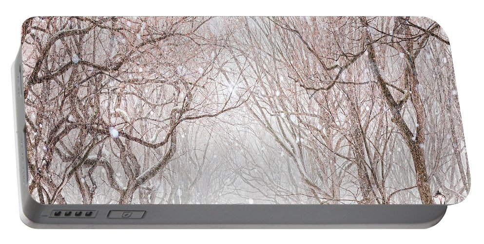 Snow Portable Battery Charger featuring the digital art A Snowy Lane by Tim Palmer