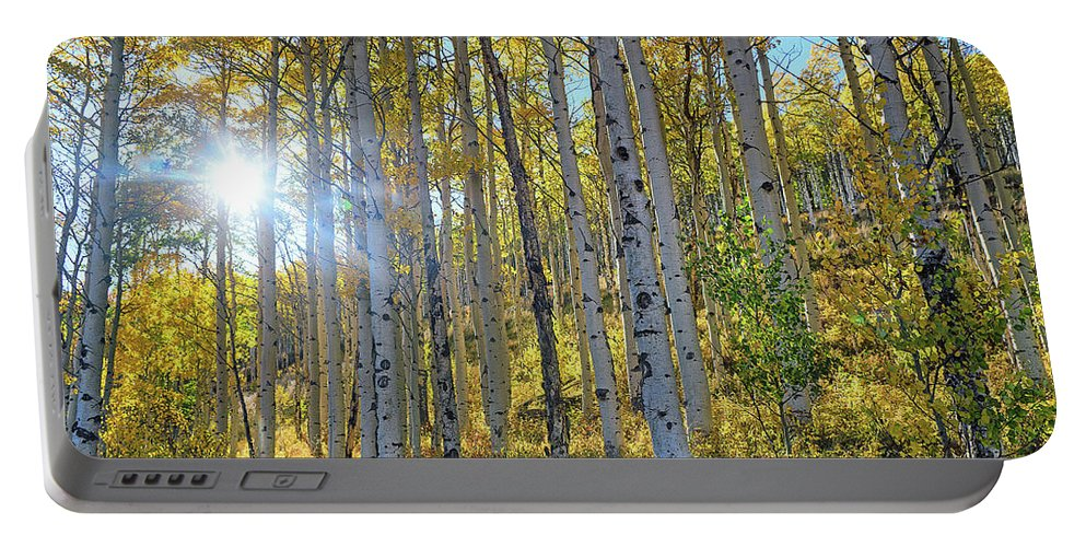 Aspens Portable Battery Charger featuring the photograph Afternoon Aspens by Brian Kerls
