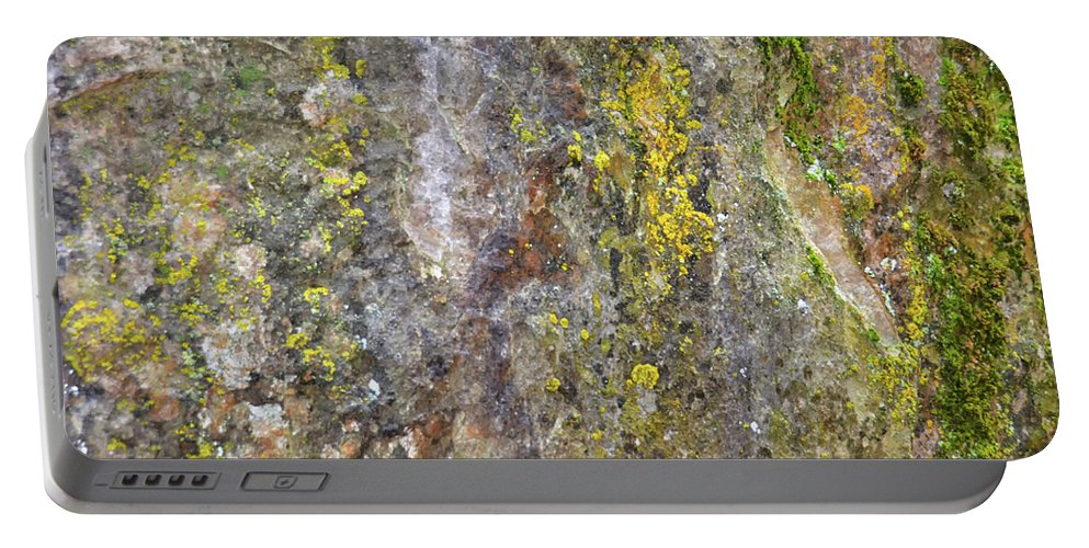 Nature Portable Battery Charger featuring the mixed media Along The Trail 3 by Angelina Tamez