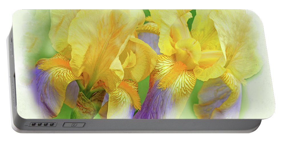 Iris Flowers Portable Battery Charger featuring the photograph Amenti Yellow Iris Flowers by Regina Geoghan