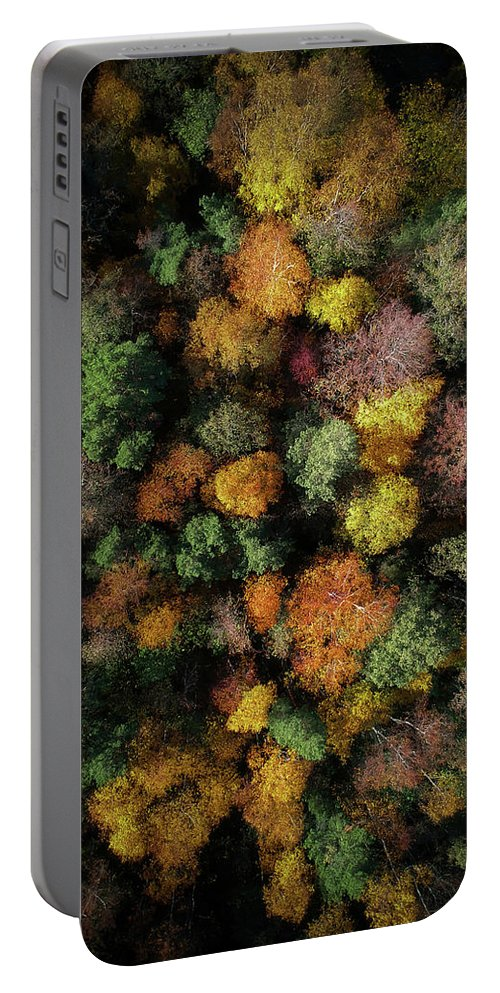 Drone Portable Battery Charger featuring the photograph Autumn Forest - Aerial Photography by Nicklas Gustafsson