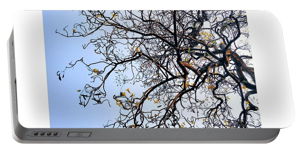 Autumn Portable Battery Charger featuring the photograph Autumn by Priya Hazra