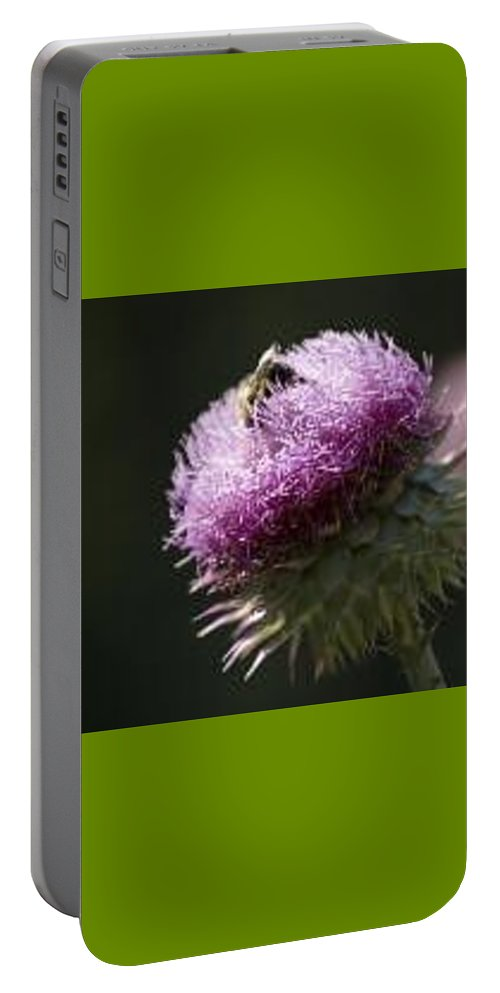 Bee Portable Battery Charger featuring the photograph Bee on Thistle by Nancy Ayanna Wyatt