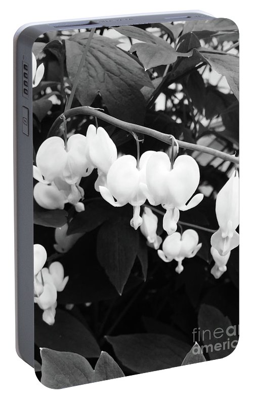 Flower Portable Battery Charger featuring the photograph Black And White Bleeding Heart by Megan Cohen