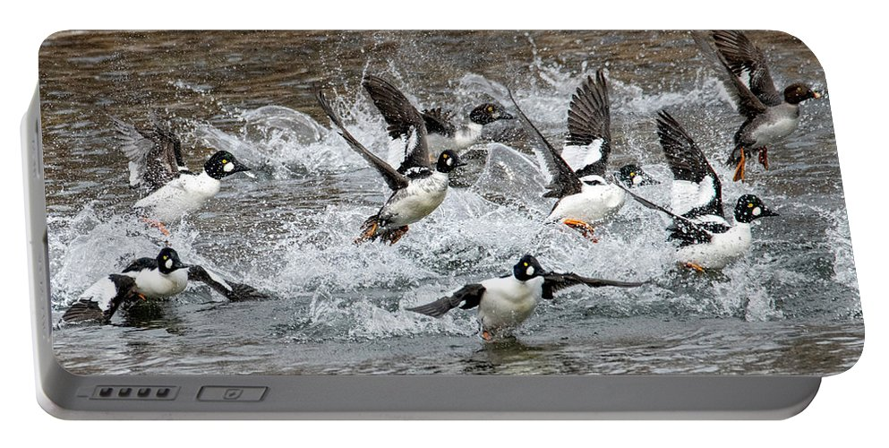 Goldeneyes Portable Battery Charger featuring the photograph Blast Off by Mike Dawson