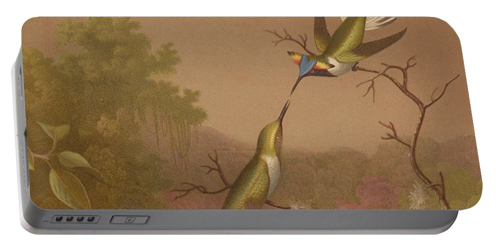 Brazilian Hummingbirds Portable Battery Charger featuring the painting Brazilian Hummingbirds II by Martin Johnson Heade