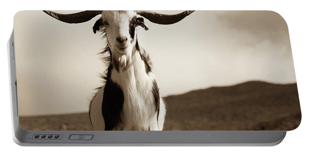 Landscape Portable Battery Charger featuring the photograph Cabra De Fuerteventura by Eliza Spatar