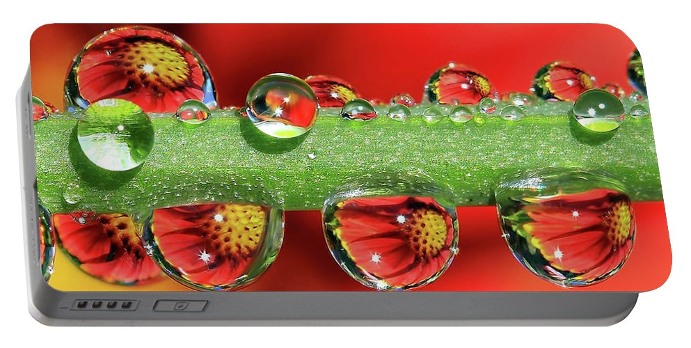 Water Drops Portable Battery Charger featuring the photograph Firey Drops by Gary Yost