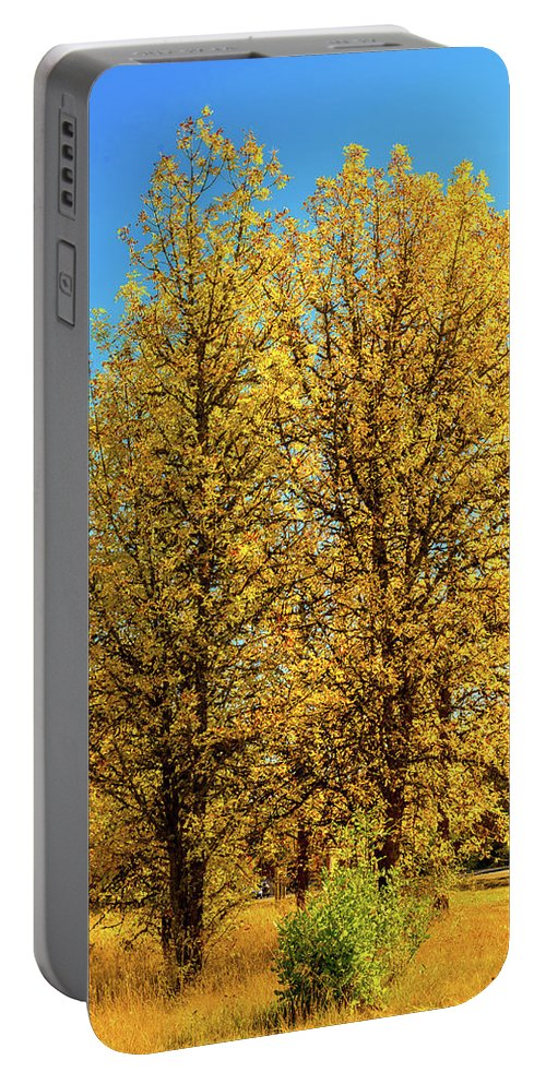 Landscape Portable Battery Charger featuring the photograph Foliage by Dheeraj Mutha
