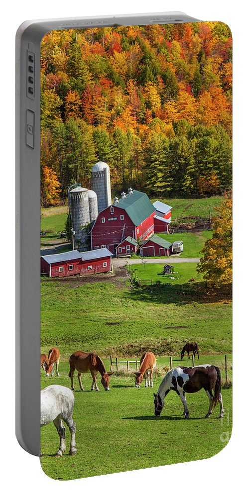 Autumn Portable Battery Charger featuring the photograph Horses Grazing In Autumn by Brian Jannsen