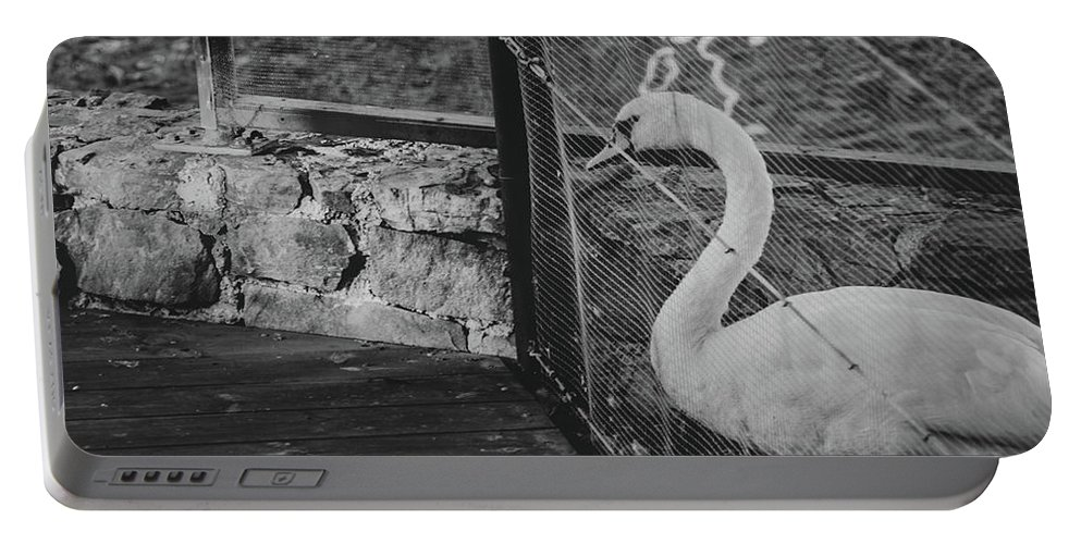 Swan Portable Battery Charger featuring the photograph Jail by Borja Robles