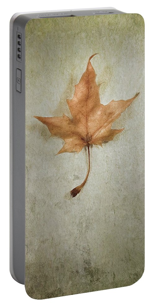 Leaf Portable Battery Charger featuring the photograph Last Days by Scott Norris