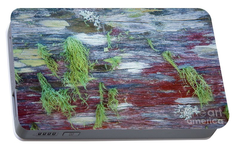Moss Portable Battery Charger featuring the photograph Moss On Old Fence by Sheila Smart Fine Art Photography