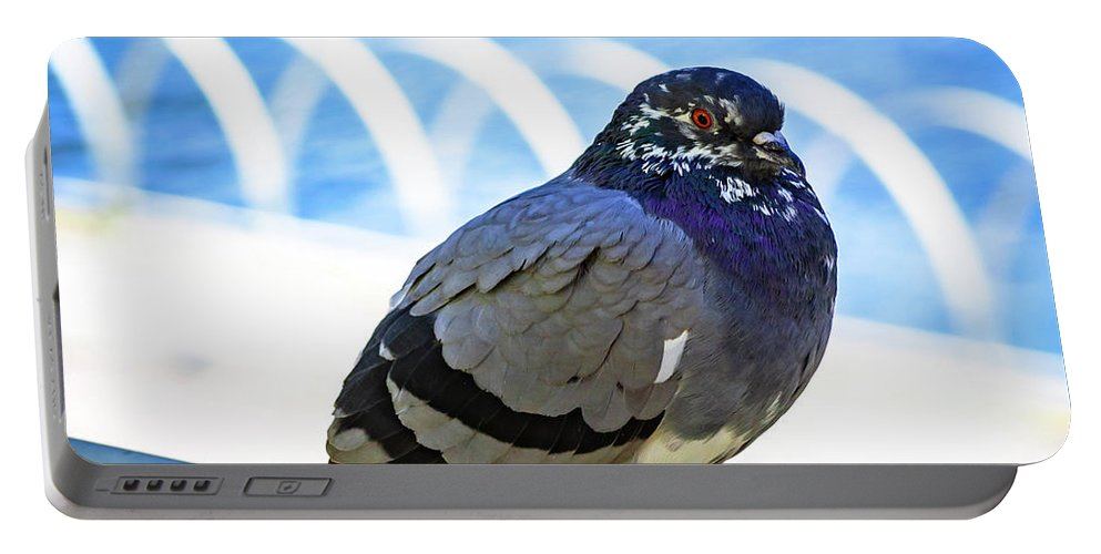 Pigeon Portable Battery Charger featuring the photograph Mr. Pigeon by Borja Robles
