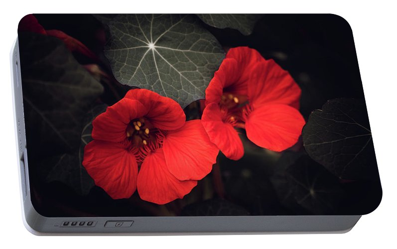 Selective Color Portable Battery Charger featuring the mixed media Nasturtium Drama by Bonnie Bruno