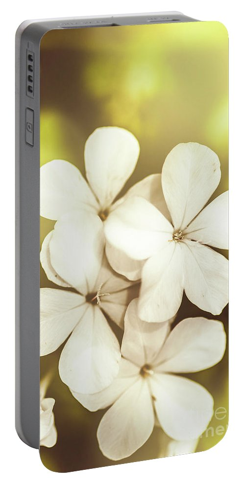 White Portable Battery Charger featuring the photograph Pale Wildflowers by Jorgo Photography - Wall Art Gallery