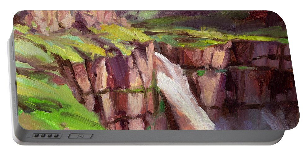 Waterfall Portable Battery Charger featuring the painting Palouse Falls Rush by Steve Henderson