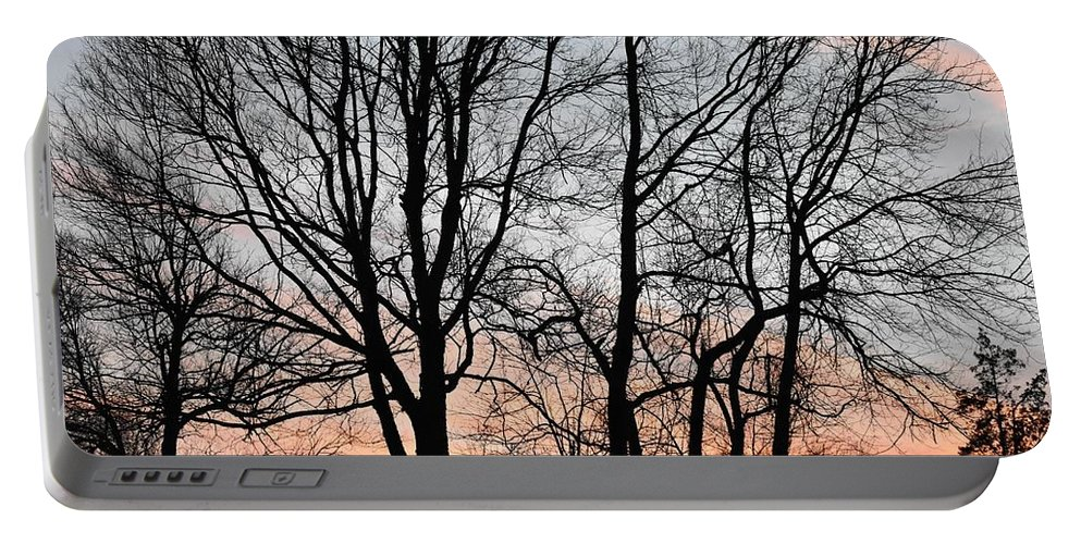 Trees Portable Battery Charger featuring the photograph Pink Sky by Cassidy Marshall