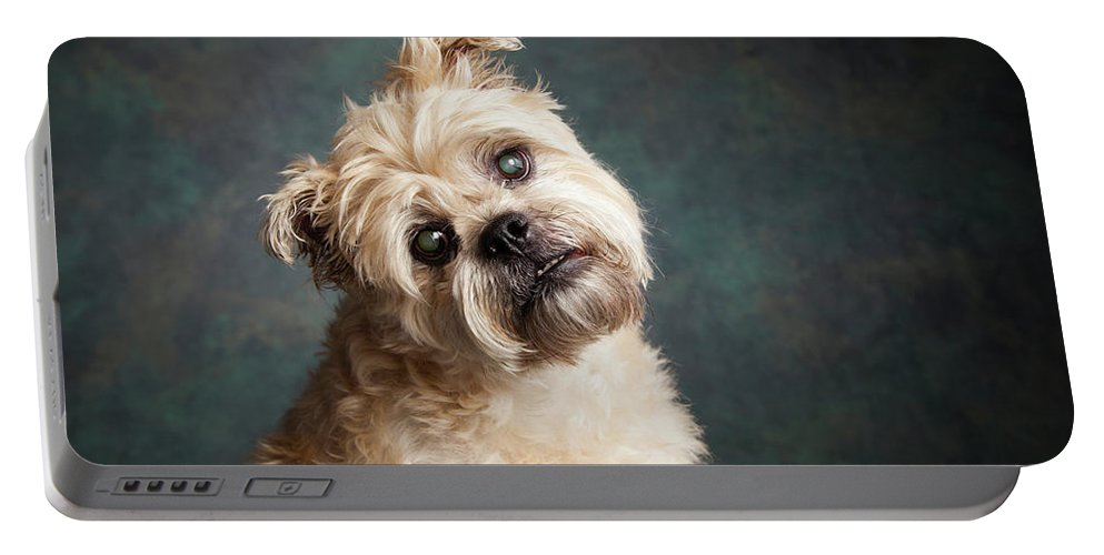 Photography Portable Battery Charger featuring the photograph Portrait Of A Brussels Griffon Dog by Panoramic Images