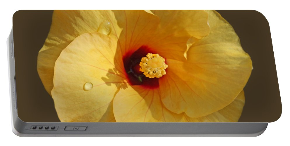 Yellow Hibiscus Bloom Portable Battery Charger featuring the photograph Rain and Shine by Charles Stuart