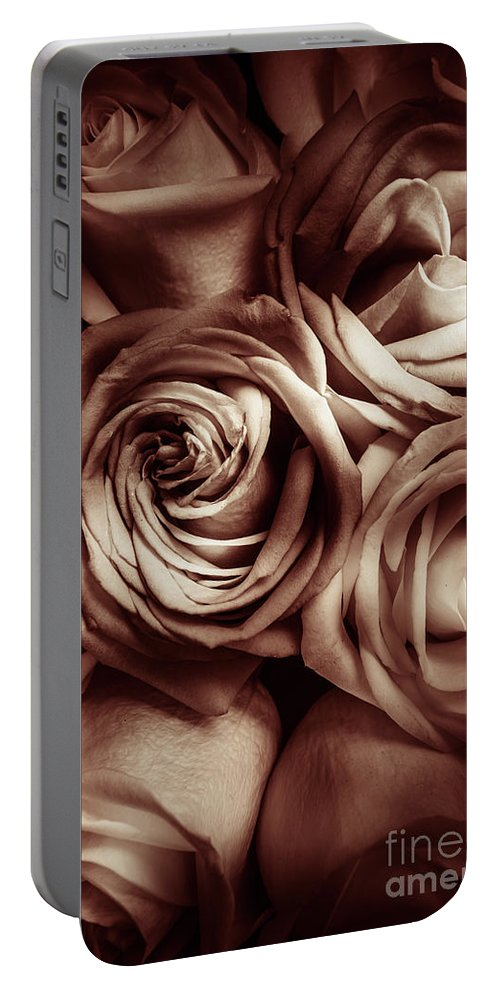Classical Portable Battery Charger featuring the photograph Rose Carmine by Jorgo Photography - Wall Art Gallery