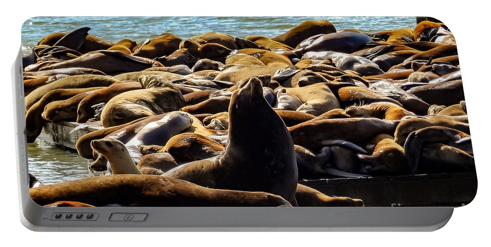 San Francisco Portable Battery Charger featuring the photograph San Francisco's Pier 39 Walruses 2 by G Matthew Laughton