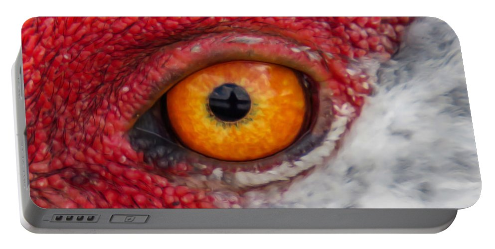 Eyes Portable Battery Charger featuring the photograph Sandhill Crane Eye by Zina Stromberg