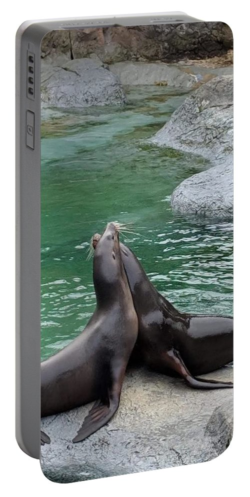 Blue Portable Battery Charger featuring the photograph Seal by Aswini Moraikat Surendran
