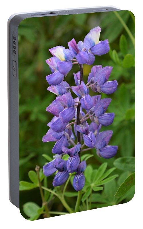 Lupine Portable Battery Charger featuring the photograph Skogafoss Lupine by Norman Burnham