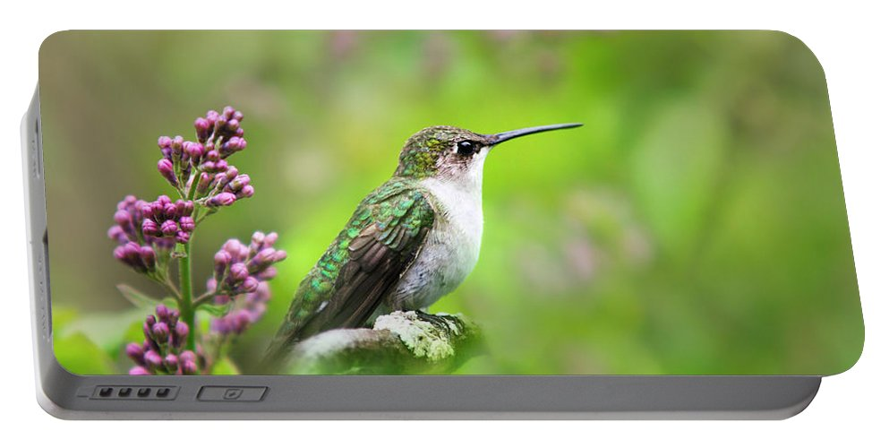 Hummingbird Portable Battery Charger featuring the photograph Spring Beauty Ruby Throat Hummingbird by Christina Rollo