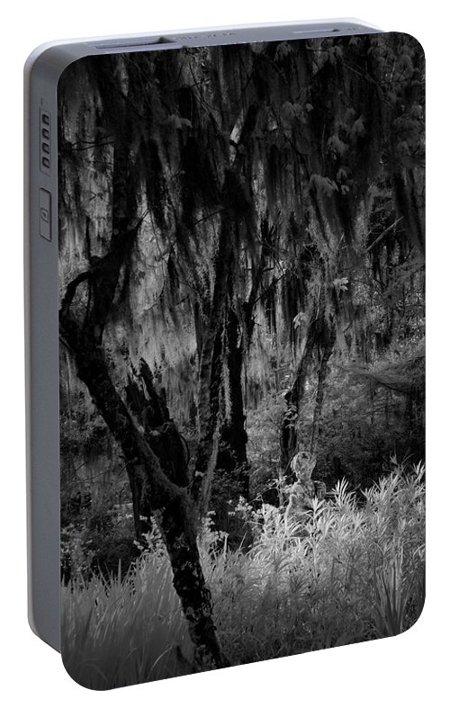 Black And White Portable Battery Charger featuring the photograph Statue In The Grass by Jon Glaser