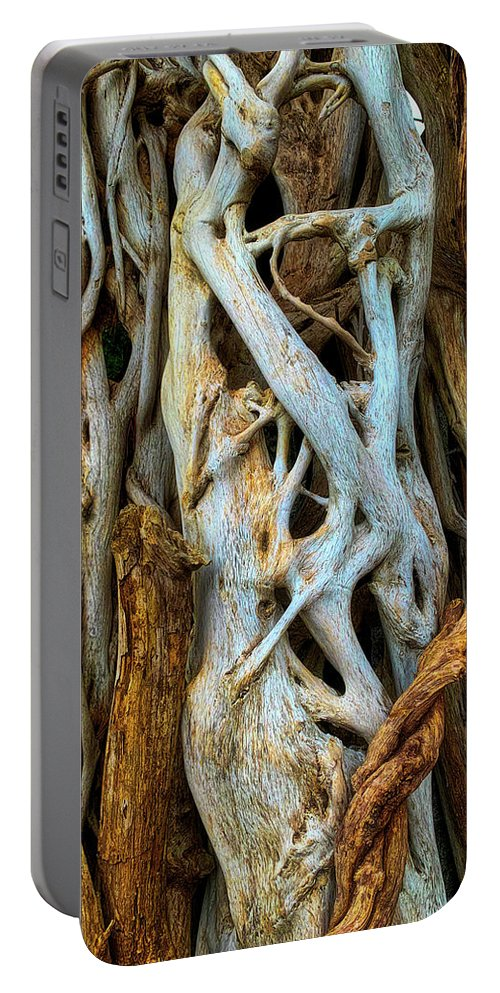 Twisted Portable Battery Charger featuring the photograph Twisted Tree Limbs by Garry Gay