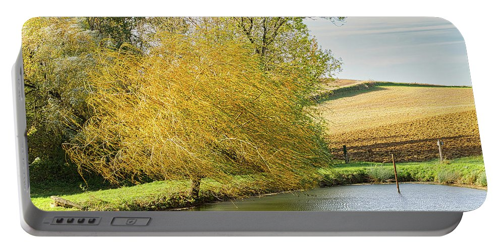Wind Portable Battery Charger featuring the photograph Wind In The Willow by Michael Briley